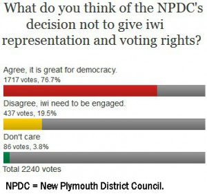 Stuff-Poll-Iwi-votes-on-council