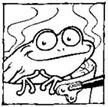 frog2_bask
